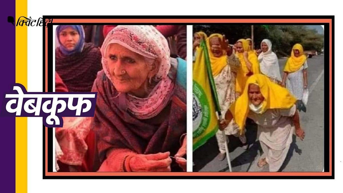 किसानों के प्रदर्शन में शाहीन बाग की बिलकिस दादी हैं?फर्जी है दावा