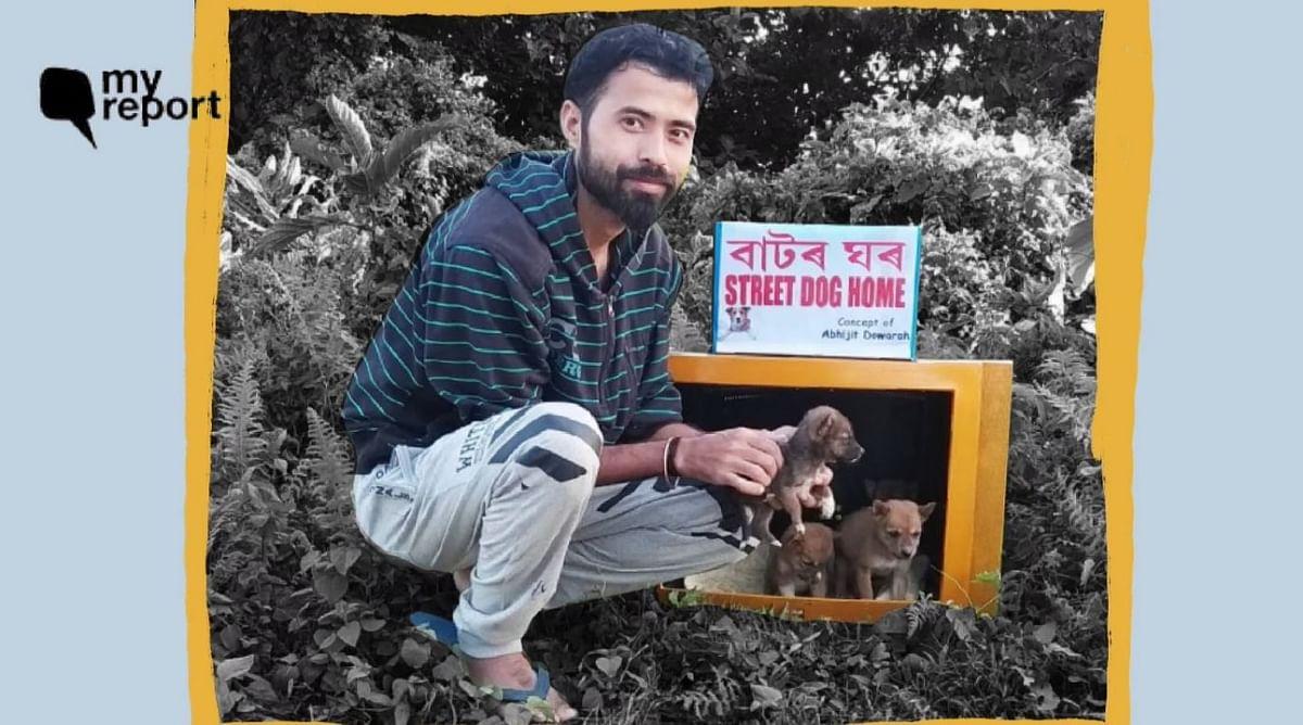 असम में टीवी सेट से बनाया आवारा जानवरों के लिए घर