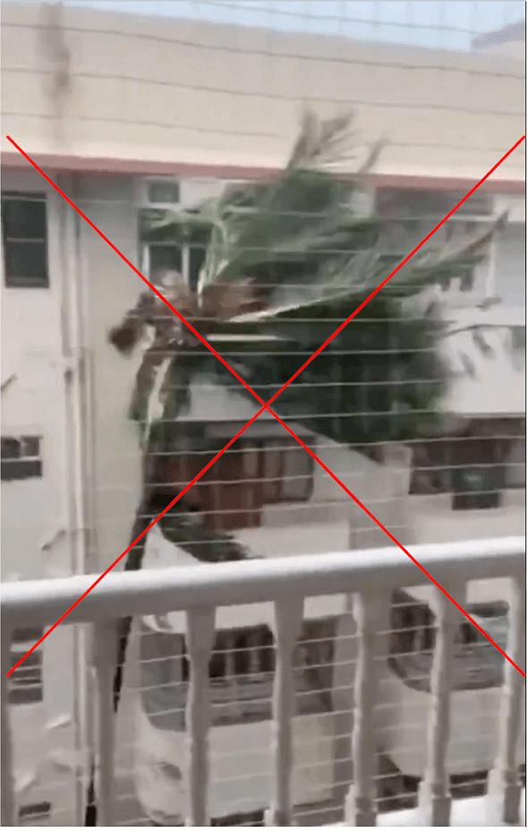 'ताऊ ते' तूफान का बता मुंबई और सऊदी अरब के पुराने वीडियो वायरल