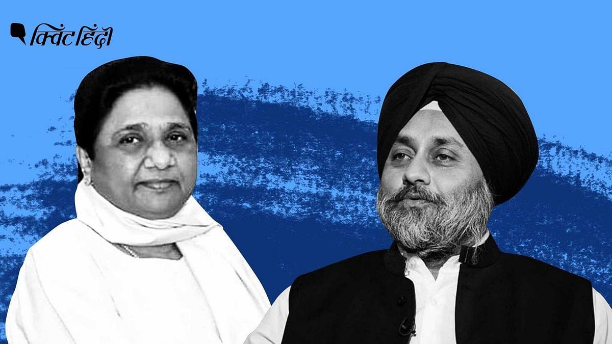 पंजाब:अकाली-BSP गठबंधन का ऐलान, राजनीतिक खेल में होगा बदलाव?