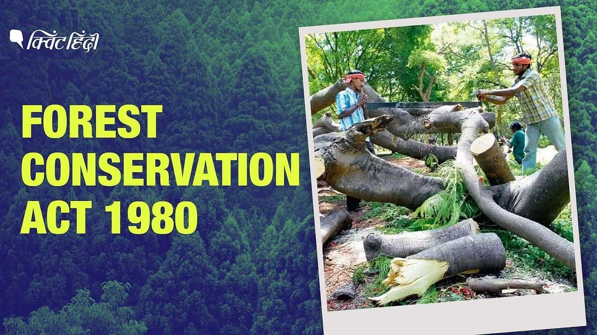 """<div class=""""paragraphs""""><p>भारत के वन अधिनियम में संशोधन विचाराधीन हैं.</p></div>"""