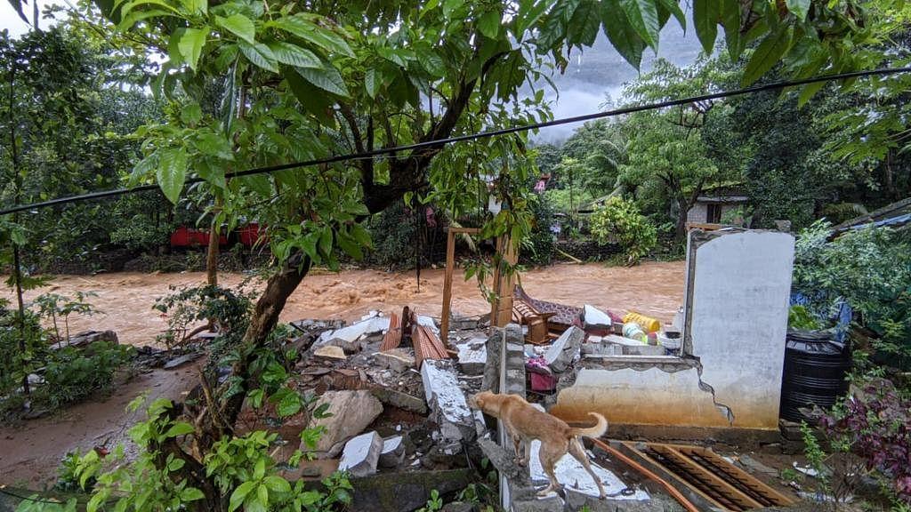 """<div class=""""paragraphs""""><p>बाढ़ से प्रभावित इडुक्की का इलाका</p></div>"""