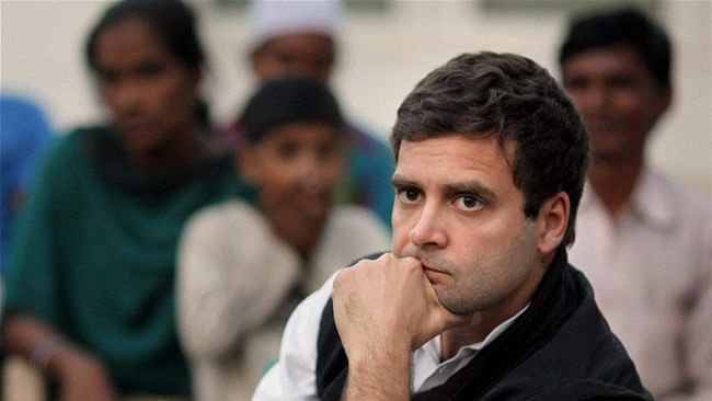 Congress Vice President Rahul Gandhi. (Photo: PTI)