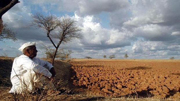After almost 10 years of below-average rainfall, the Bundelkhand's rivers, lakes, reservoirs and wells are drying up. (Photo: PTI)