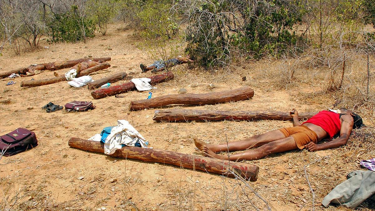 Bodies of suspected sandalwood smugglers killed during an operation by security personnel, lie in the forest area of Chitoor district of Andhra Pradesh April 7, 2015.(Photo: Reuters)
