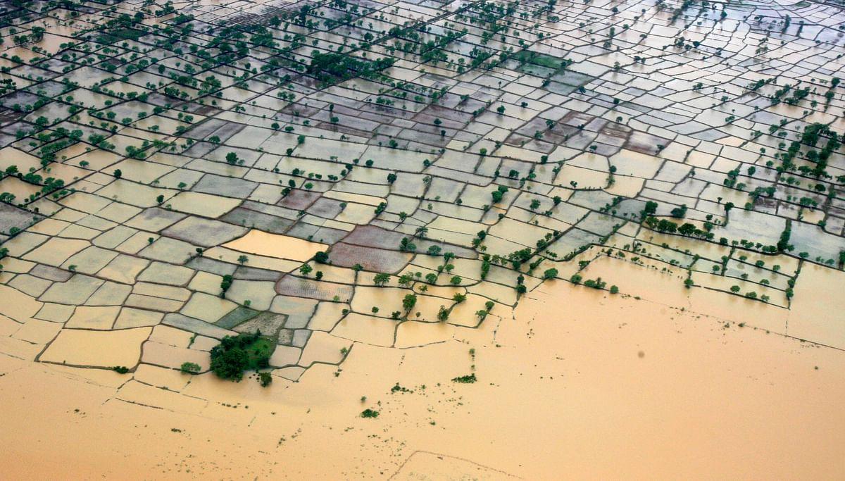 Bihar  Storm Death Toll Rises to 54