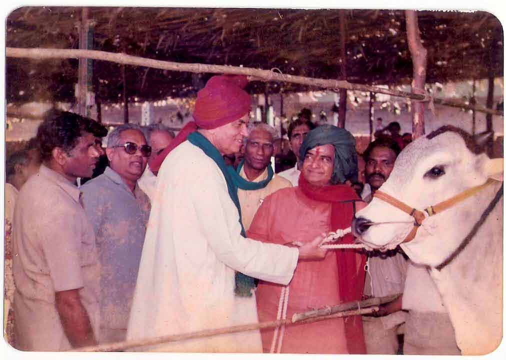 Ongole Bull of Moses after winning the Andhra Prdesh State Award in 1988 with Sri NT Rama Rao (Green Turban).
