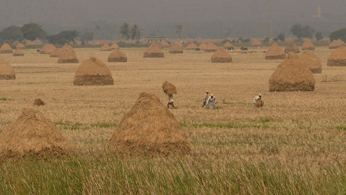 Government  promises to probe cases where there is declaration of over one crore agricultural income. (Photo: Reuters)