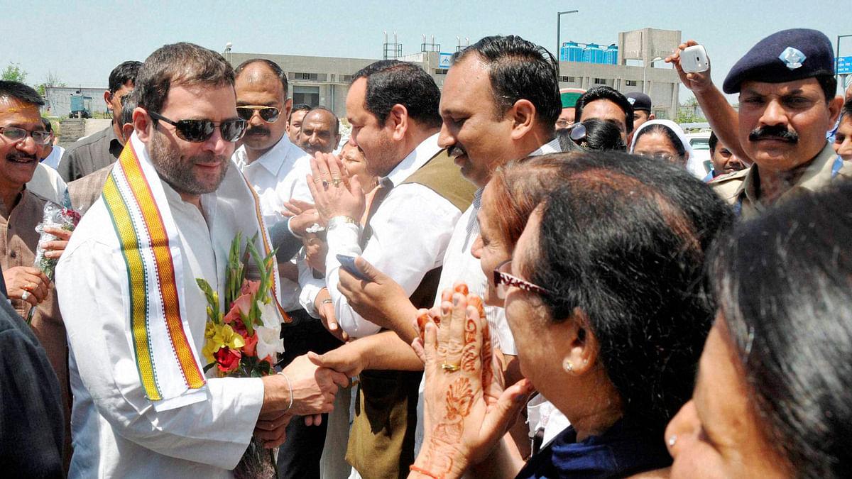 Congress Vice President Rahul Gandhi turns 45. (Photo: PTI)