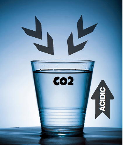 A glass of water kept outside for a couple of days tastes funny because carbon dioxide from the air changes the chemistry of water, making it more acidic (Photo: Altered<i>The Quint</i>)&nbsp;