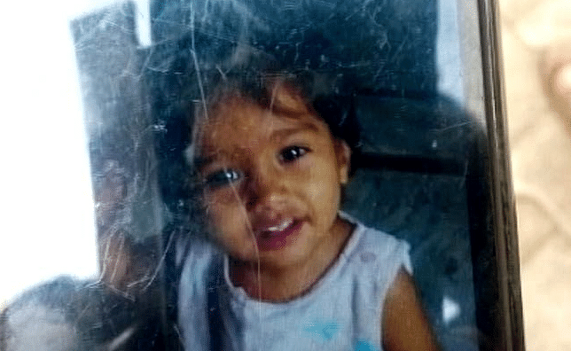 Harsh Khandelwal's younger daughter 2-year-old Chinniwas killed in the car crash.
