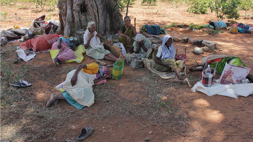 MNREGA workers resting in Dindigul district of  Tamil Nadu. (Photo credit: Vivian Fernandes)