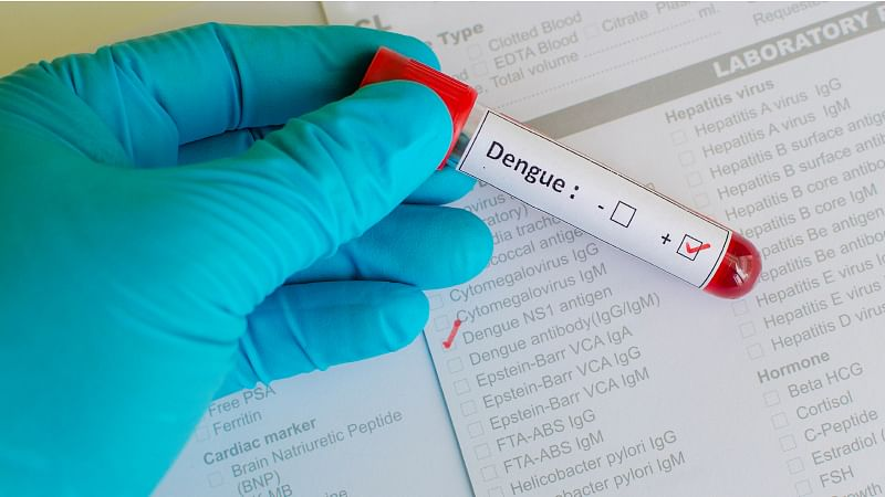 Dengue: All You Need to Know