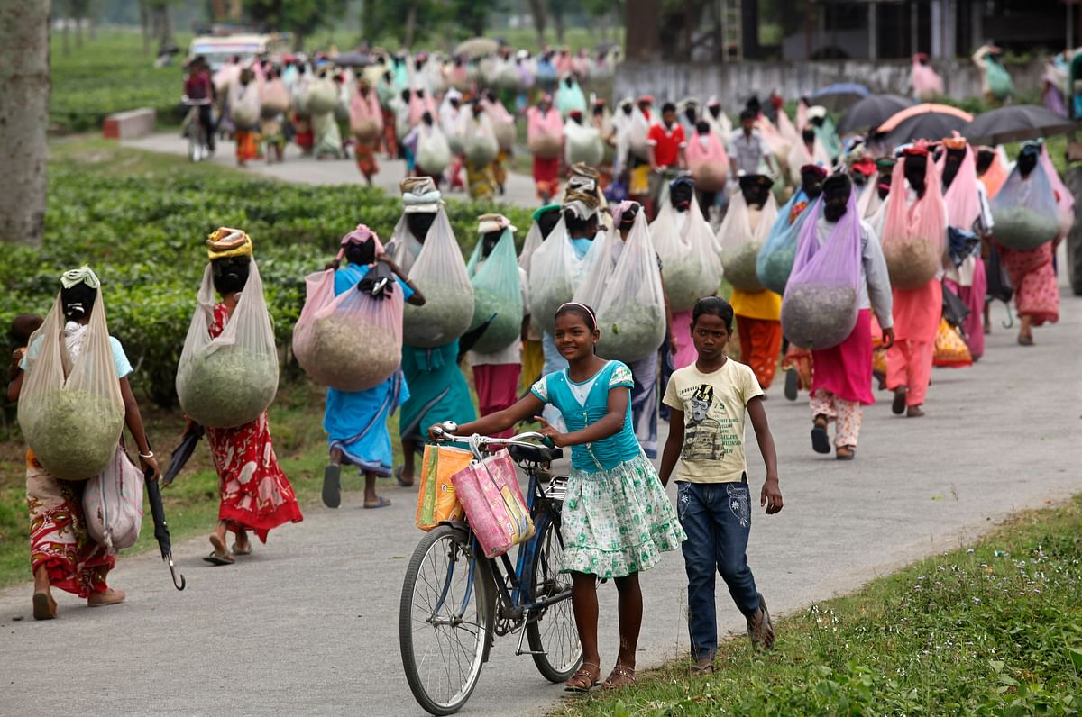 Assam tea plantation workers continue to live and work in deplorable conditions. (Photo: Reuters)