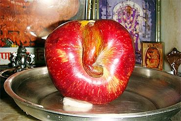"Ganesha in a apple (Photo: <a href=""http://im.rediff.com/news/2010/sep/15ganesh5.jpg"">rediff.com</a>)"