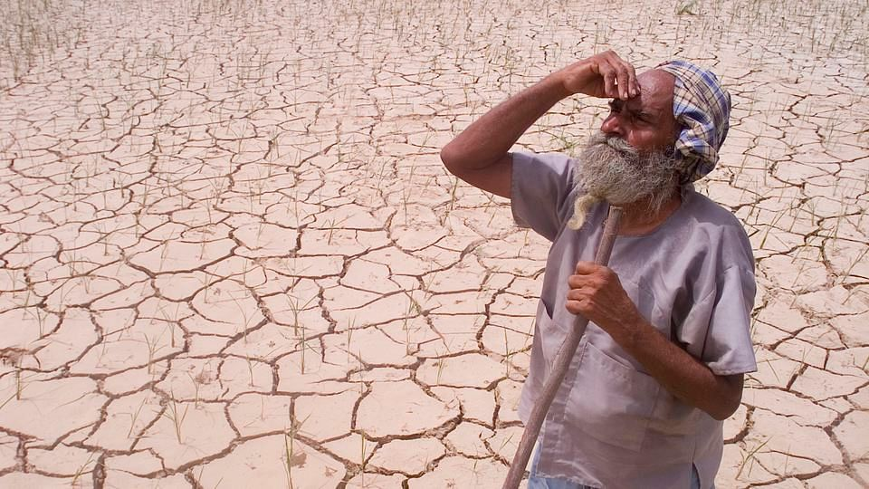 A farmer looks towards the sky, while standing amidst his drought-stricken crop. (Photo: Reuters)