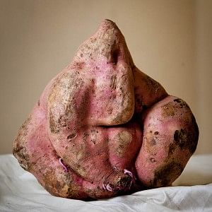 "Ganesha in a sweet potato (<a href=""http://www.gnaana.com/visuals/september11/Ganesh_Potato.jpg"">gnaana.com</a>)"