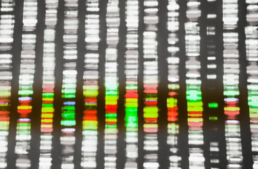 Picture of a DNA sequence on a samplebeing tested for a match. (Photo: iStockphoto)