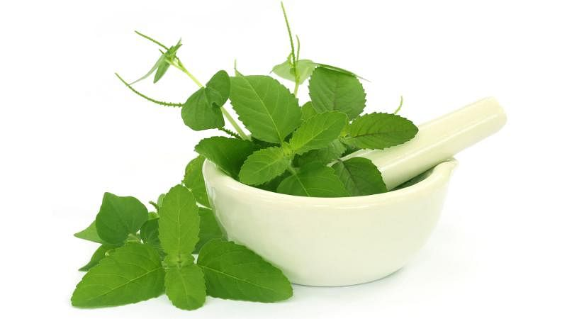 Did you know that basil is an excellent skin cleanser?