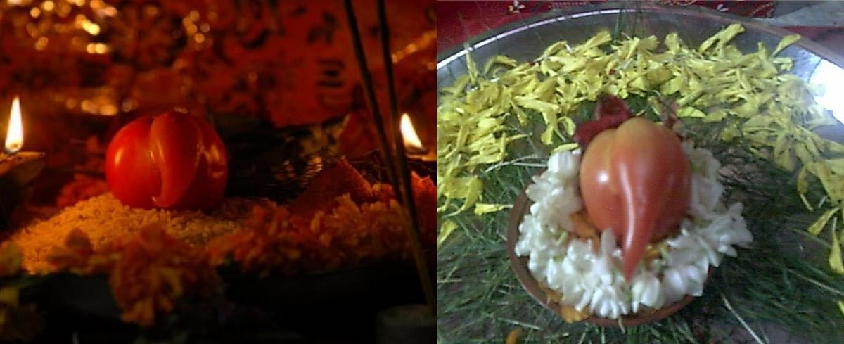 "Ganesha in a tomato (Photo: <a href=""http://www.bharatmoms.com/uploads/Image/ganesha-in-tomato.jpg"">bharatmoms.com</a>)"