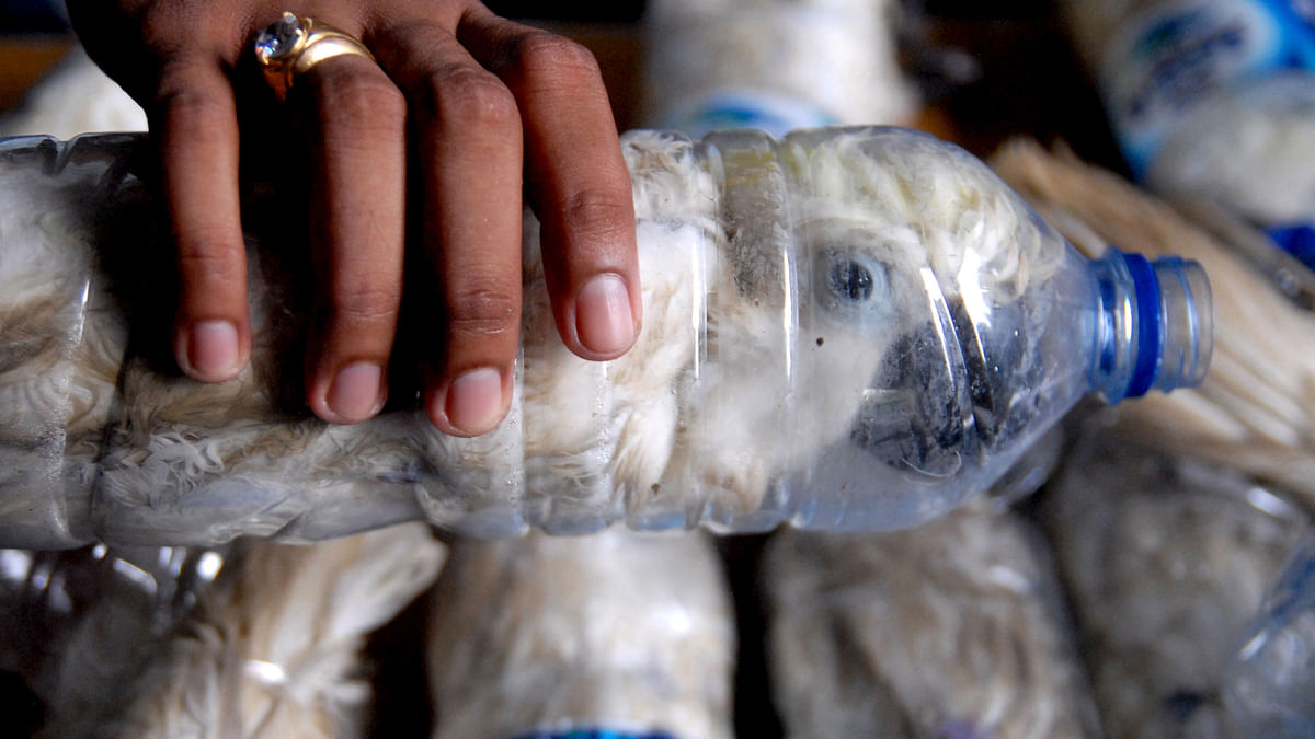 A policeman holds a water bottle with a yellow-crested cockatoo put inside for illegal trade, at the customs office of Tanjung Perak port in Surabaya, East Java province, Indonesia. (Photo: Reuters)