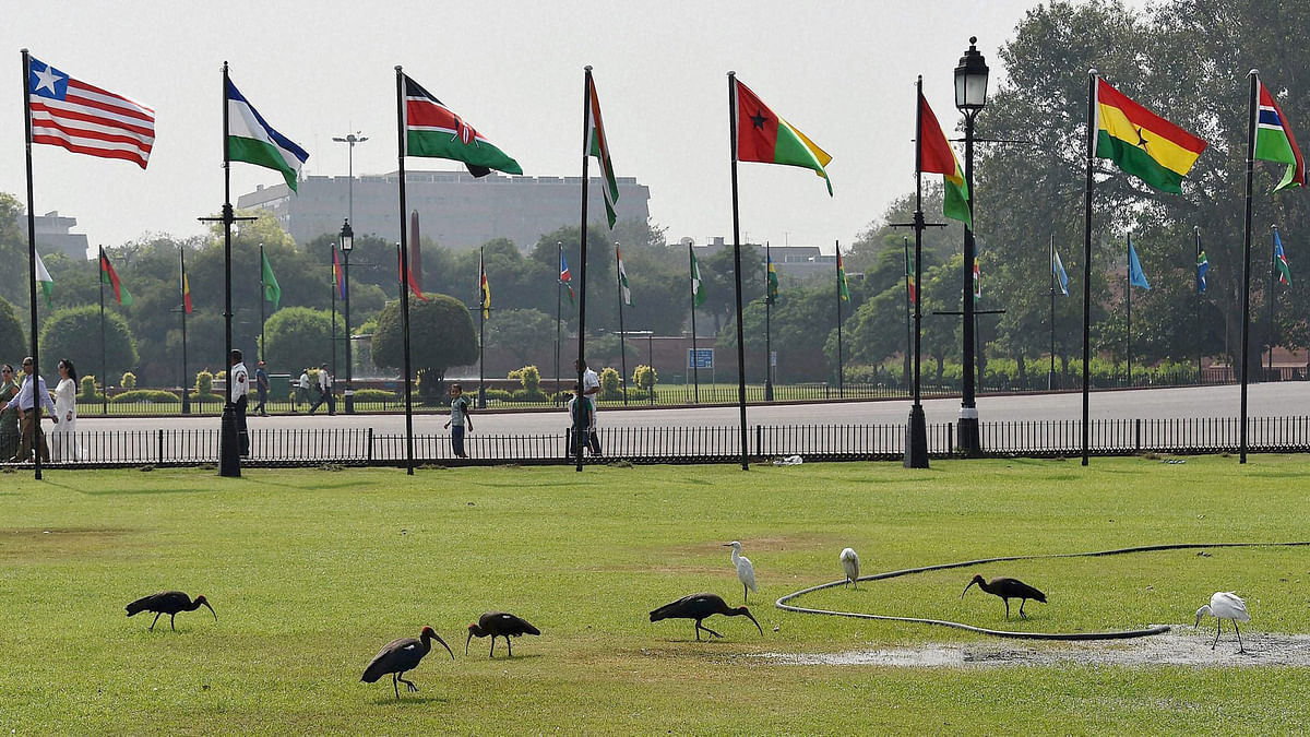 Flags of various African countries fly at Vijay Chowk ahead of the Indo-African Forum Summit 2015 in New Delhi on Monday. (Photo: PTI)
