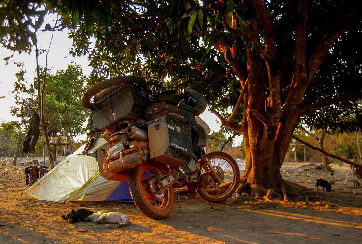 Camping with some piglets in Bolivia. (Photo Courtesy: Jay Kannaiyan)
