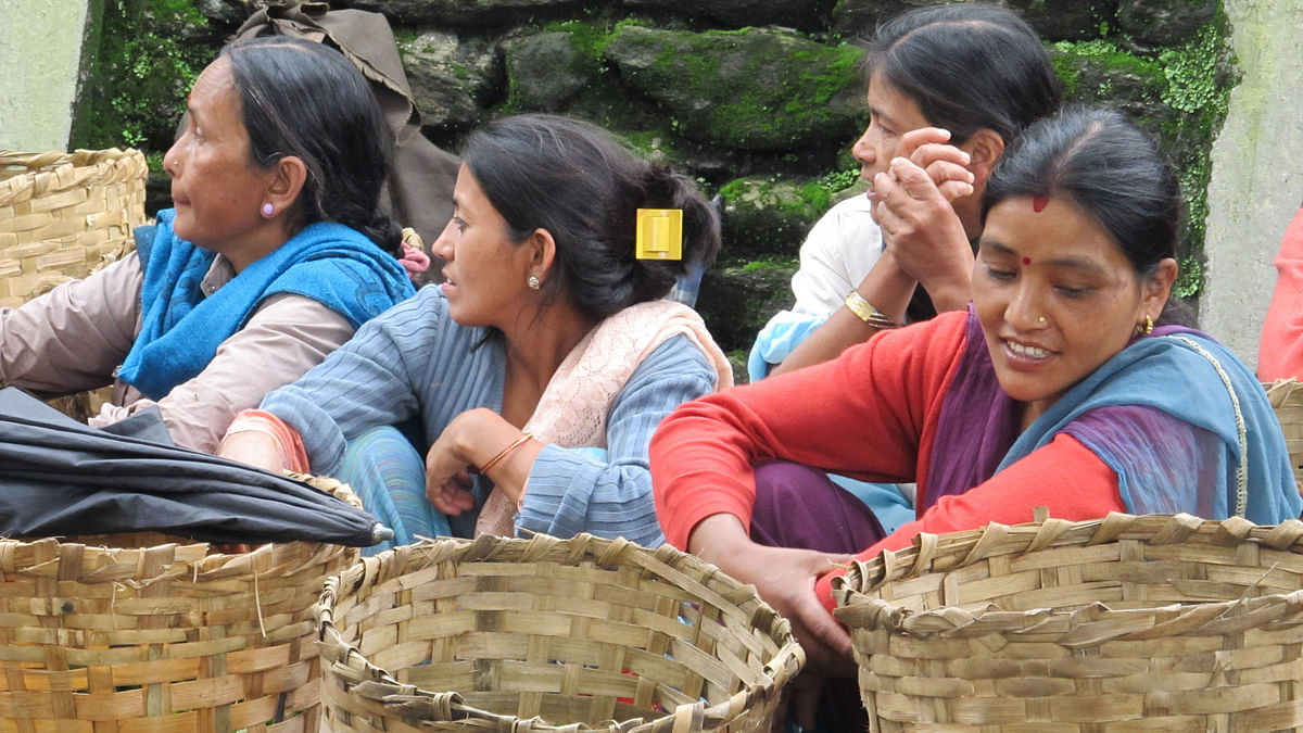 But 2015 would probably go down in history as the year which witnessed the maximum number of out-of-action tea plantations and premature workers' deaths. (Photo: Sudipta Chanda)