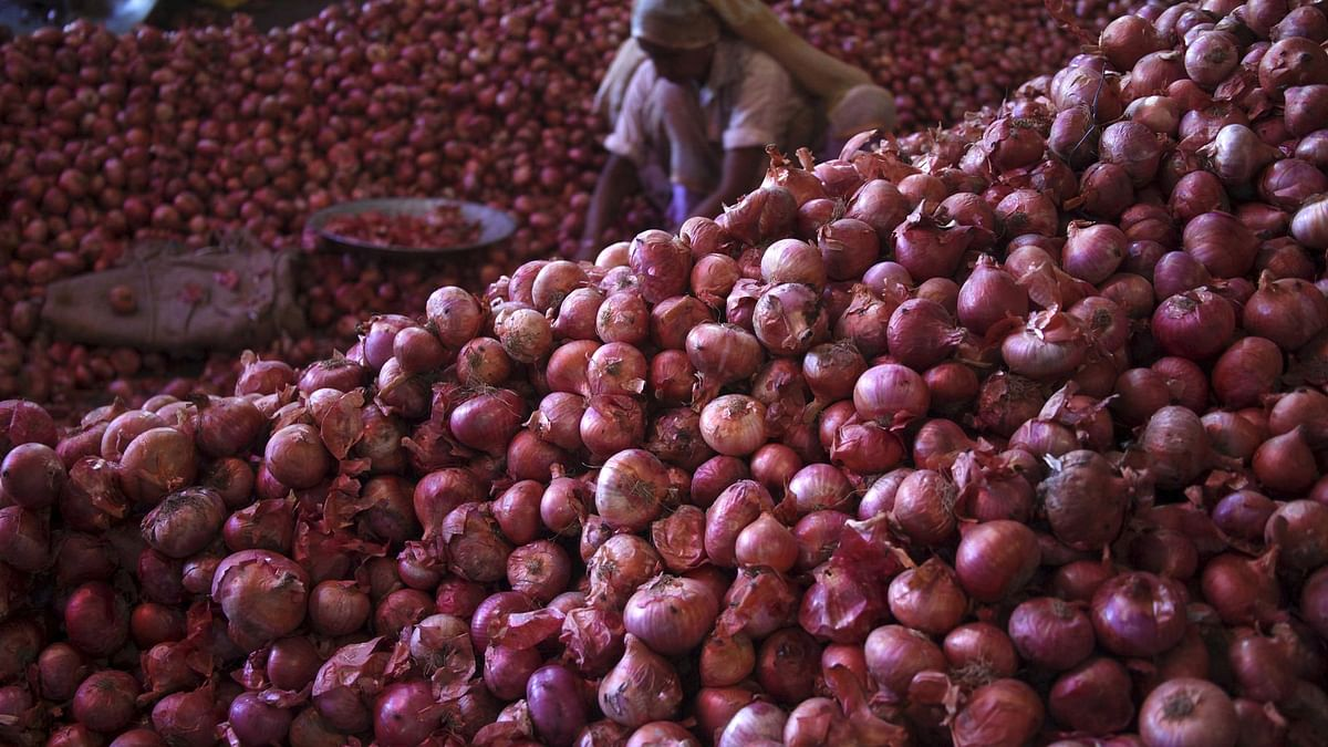 Woman sifting through a pile of onions at a wholesale market in Chandigarh. (Photo: Reuters)