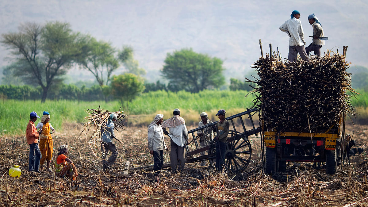 CM:We have decided to take over crop loans, from institutional sources, of families of farmers who committed suicide. (Photo: Reuters)