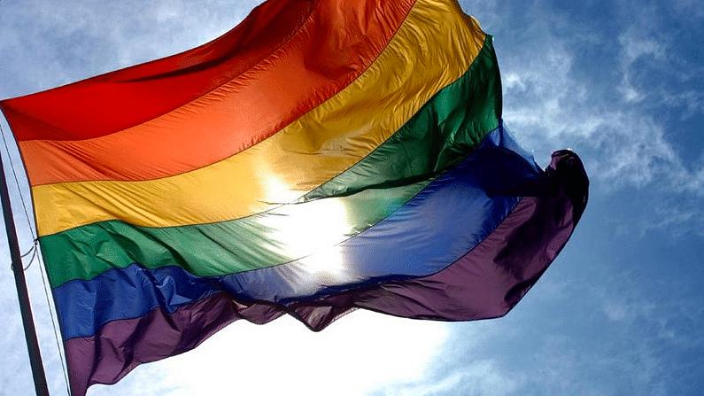 The LGBT flag.