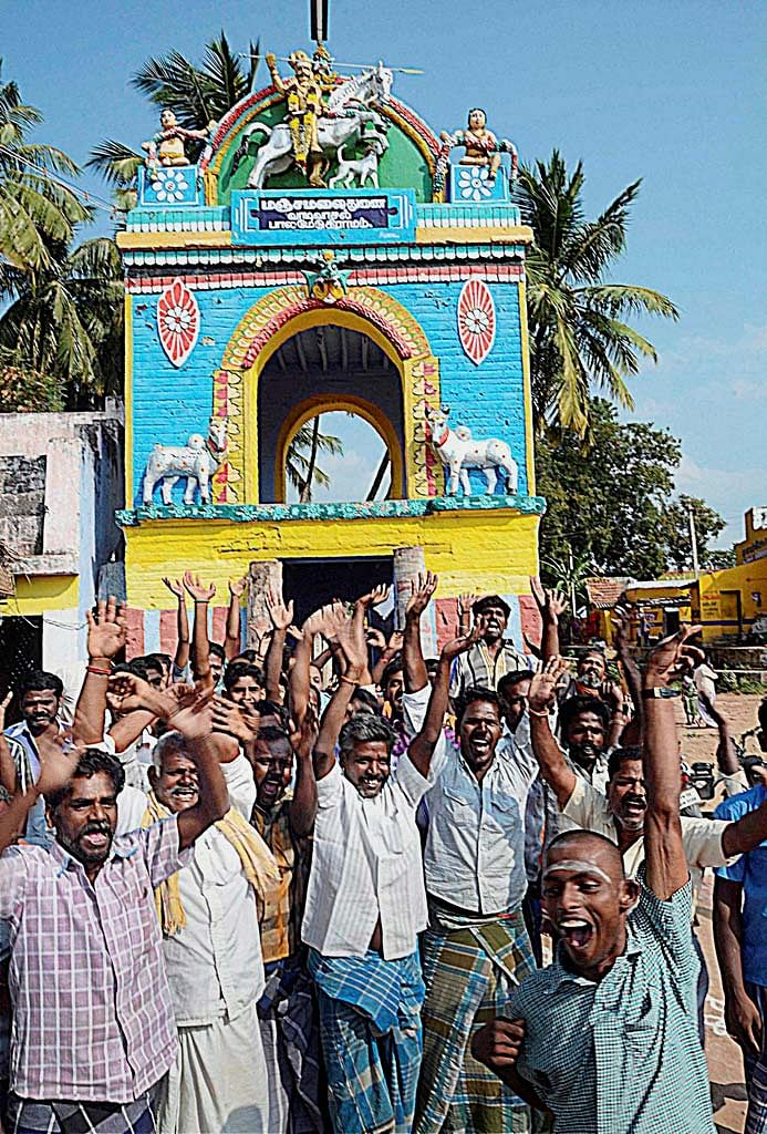 Bull tamers and bull owners celebrating after the Centre notifified lifting the ban on Jallikattu on 7 January in Madurai. (Photo: PTI)