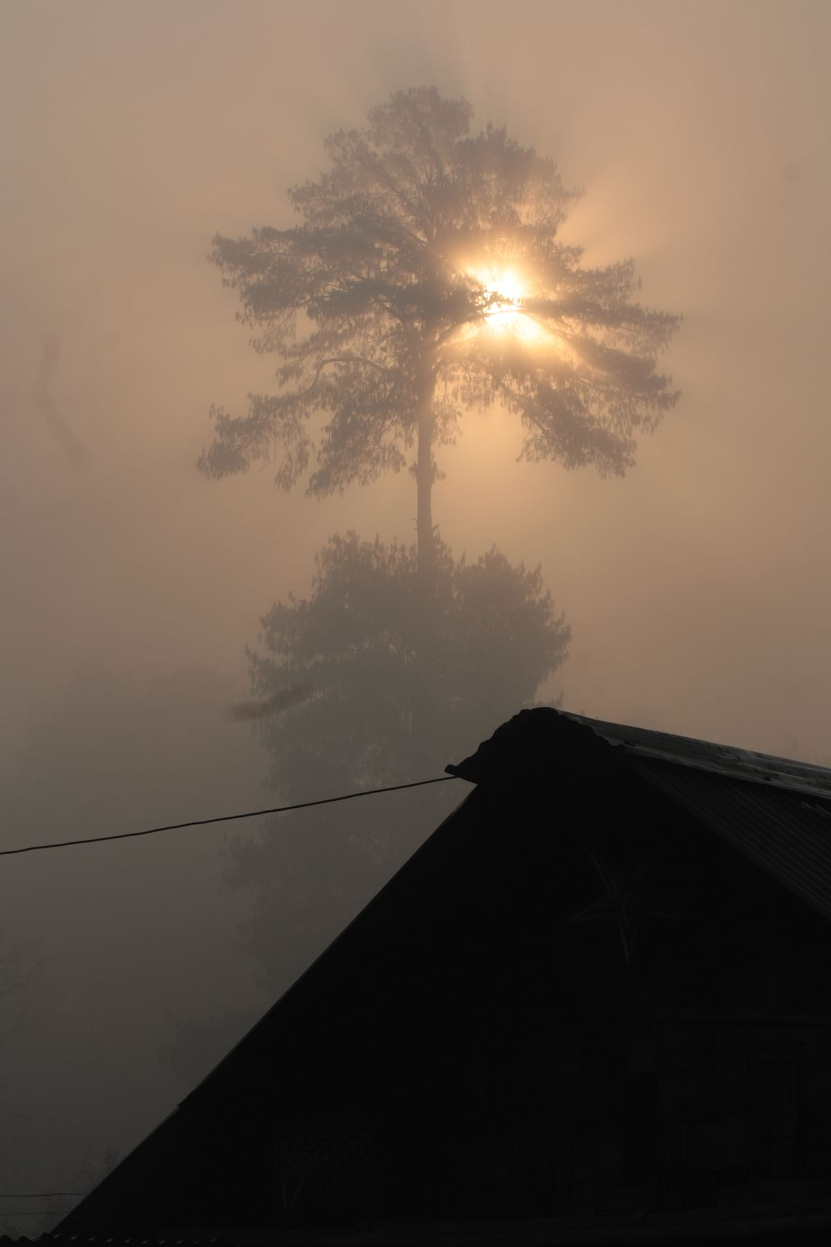 As the fog lifts, the village basks in the early morning light. (Photo Courtesy: Kushal Chowdhury)