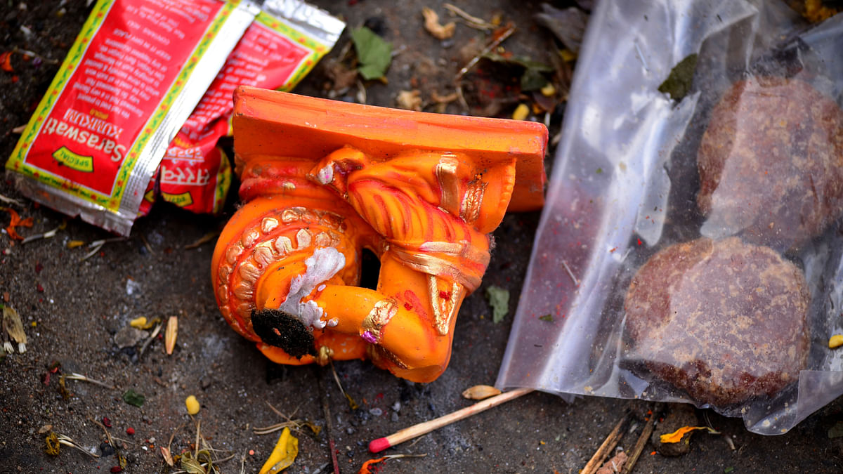 Garbage thrown into the Yamuna includes flowers, food items, idols etc. (Photo: <b>The Quint</b>)