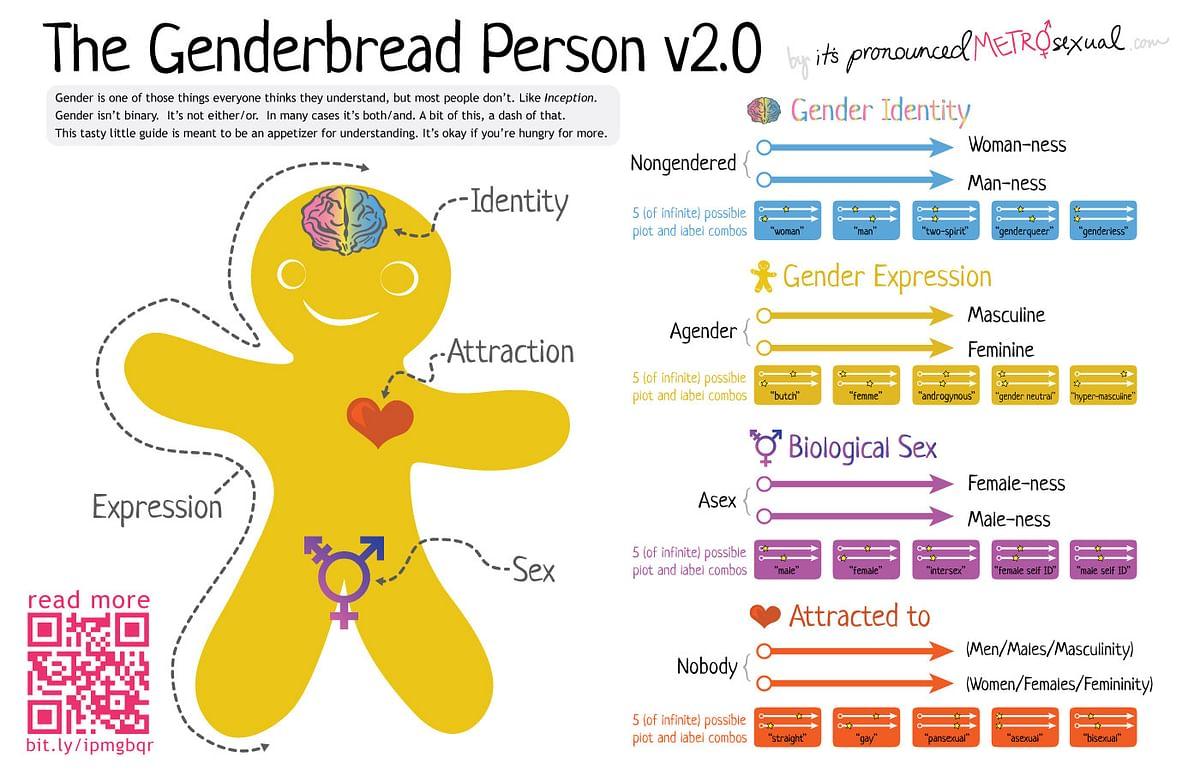 The Genderbread Person v2.0 (Photo: www.ItsPronouncedMetrosexual.com)