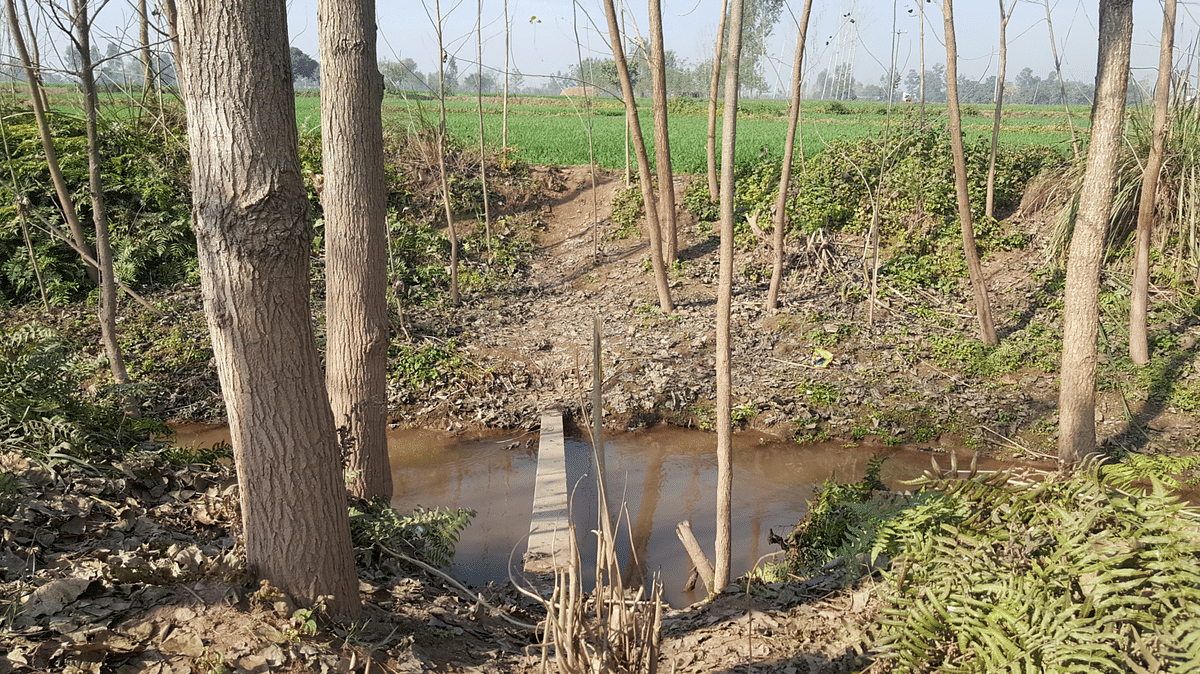 A small stream of nallah that the terrorists are suspected to have crossed before entering Bamial village in Pathankot. (Photo: <b>The Quint</b>)