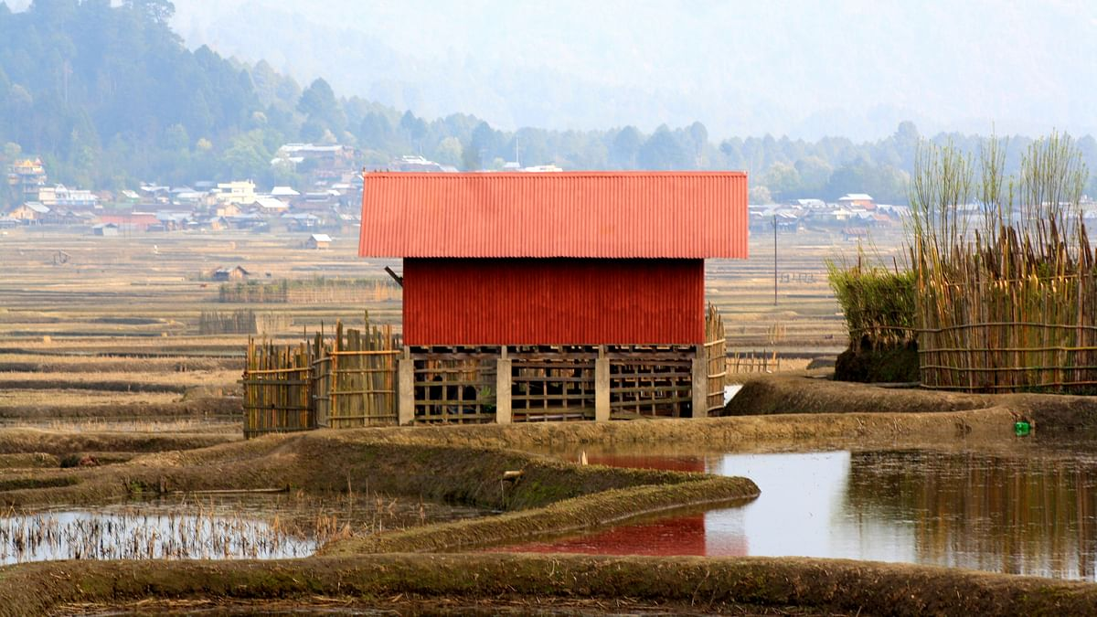 A bright red house amongst the paddy fields catches the eye. (Photo Courtesy: Kushal Chowdhury)