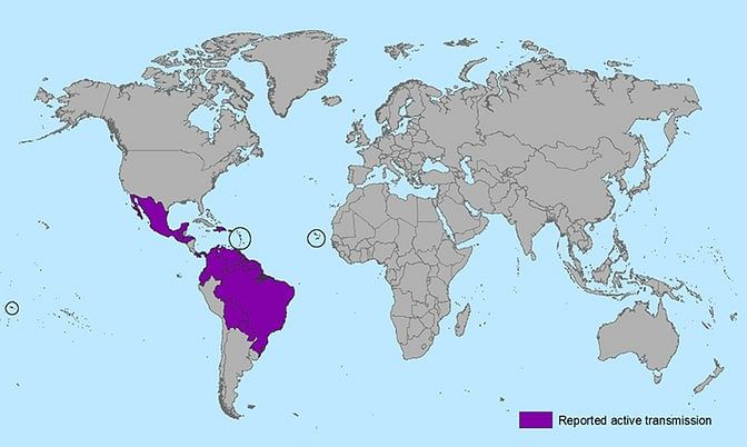 Zika affected countries highlighted above (Photo courtesy: CDC Atlanta)