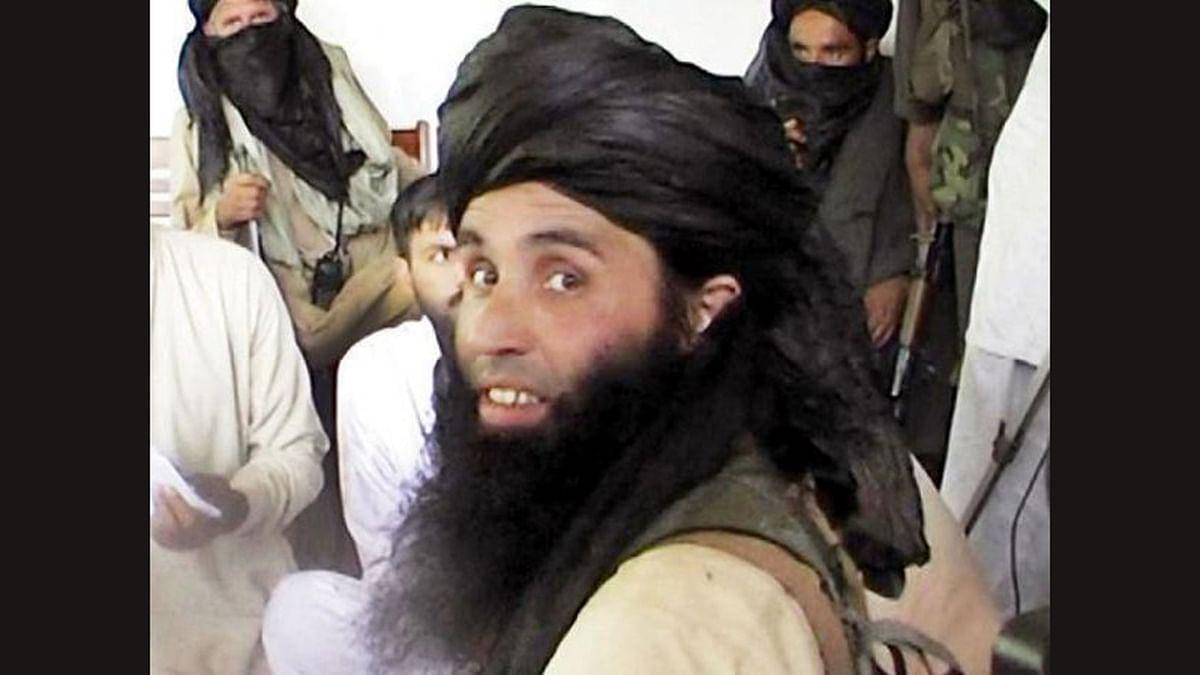 Pak Taliban Chief Killed, Nasir-ul-Mulk Thanks Ghani for Intel