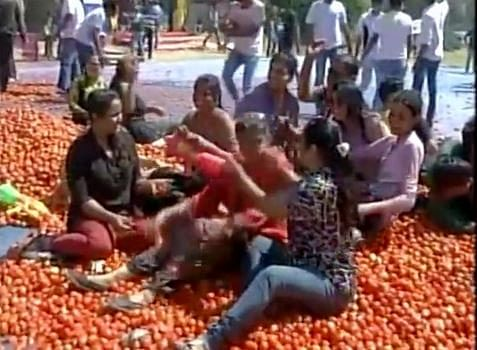 Holi being played with tomatoes in Ahmedabad. (Photo: ANI)
