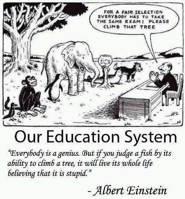 """The flaws in our education system. (Photo: Twitter/<a href=""""https://twitter.com/WAKEUPPEOPL3"""">Open Your Mind</a>)"""