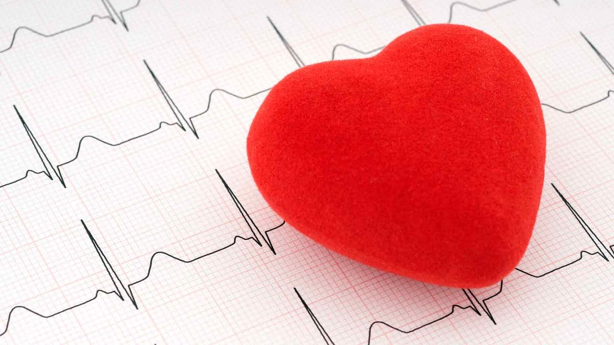 IIT Hyd Team Developing Novel Sensor to Detect Heart Diseases