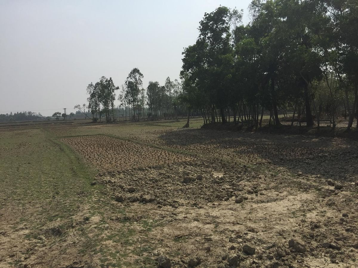 """""""Farming in itself is not profitable anymore"""", says a Nandigram local.  (Photo: <b>The Quint</b>/Abhirup Dam)"""