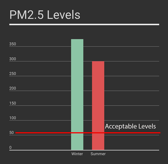 Airborne particle PM2.5 is one of the worst pollutants for human health. (Graphic: Manon Verchot)
