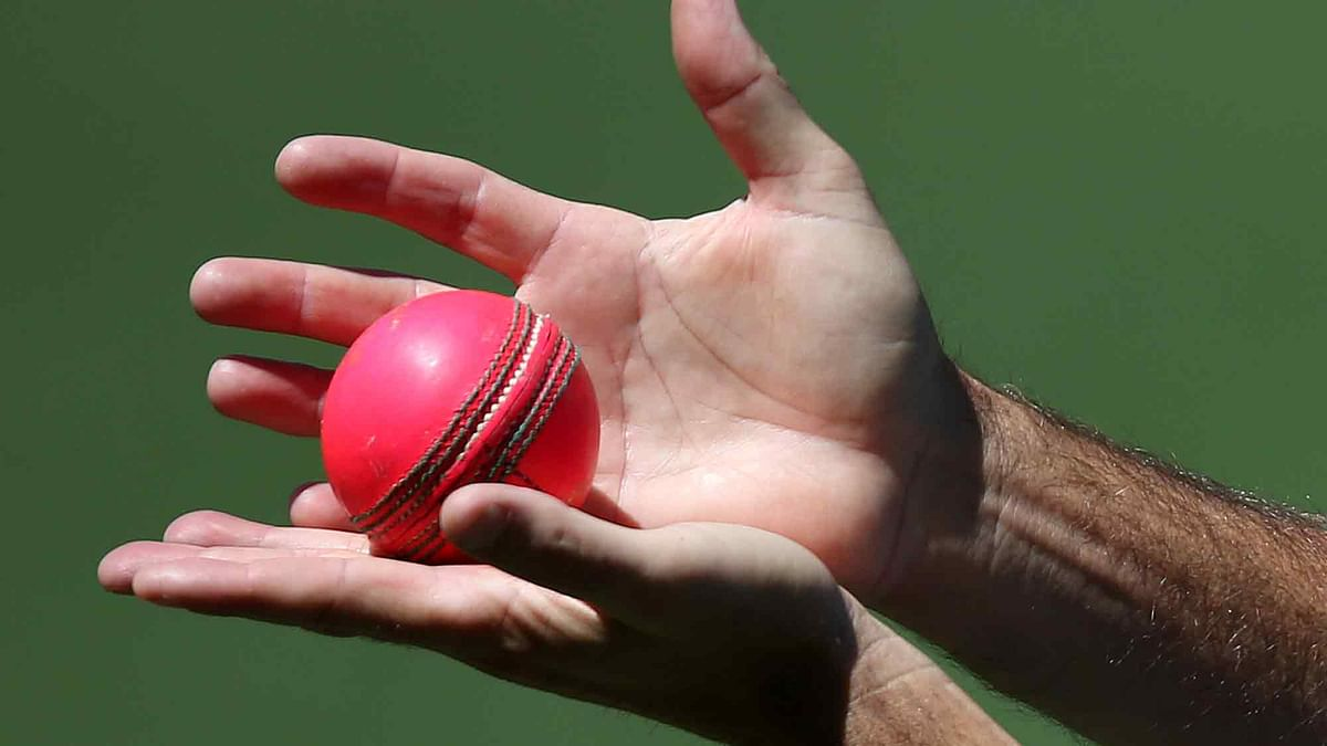 File photo of Pink Test Cricket Ball (Photo: AP)