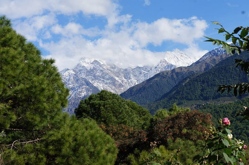 "(Photo Courtesy: Facebook/<a href=""https://www.facebook.com/Holiday-Home-Palampur-236224519755917/?fref=photo"">Holiday Home Palampur</a>)"