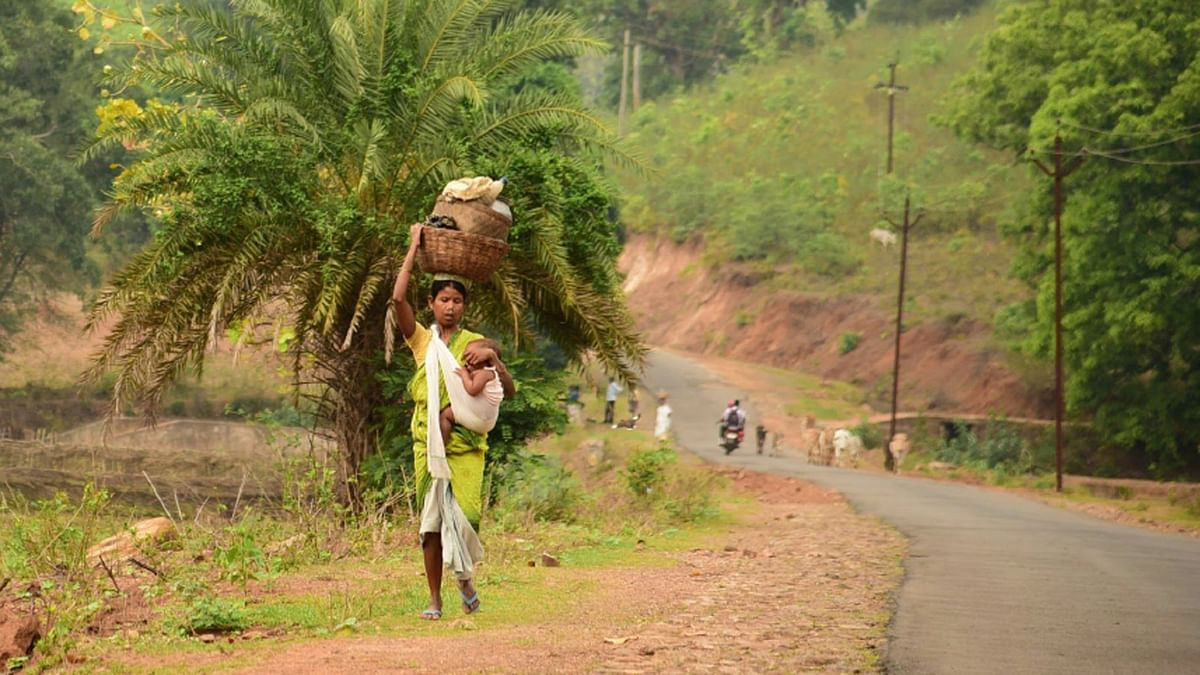 A mother belonging to Kui tribe heads to work, even as she wraps her infant child around herself. Collection of forest produce and its sale is a major livelihood activity among the tribes. (Photo Courtesy: Ankush Vengurlekar)