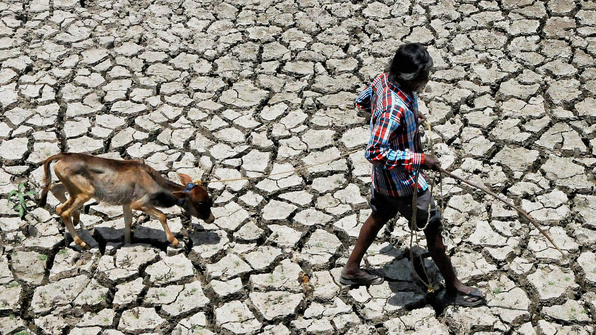 Representational image. No water for rabi under Jurala and other dependent irrigation systems.