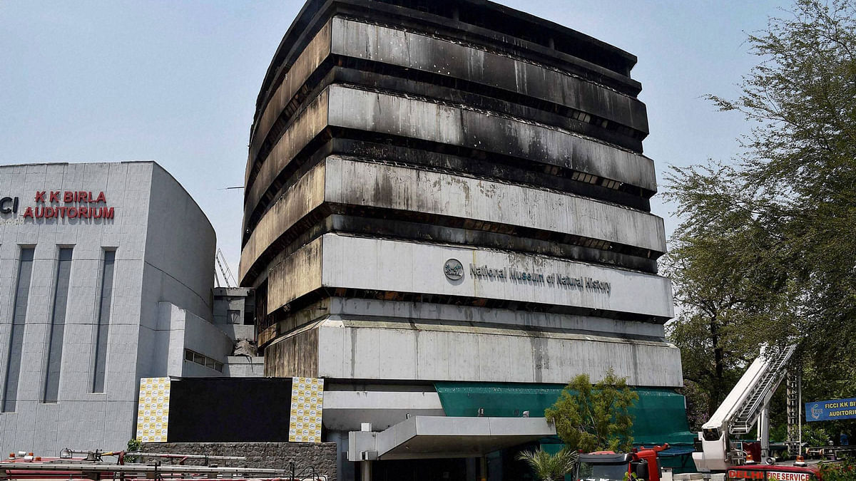 A view of the National Museum of Natural History that was destroyed after a fire broke out at FICCI building in New Delhi in the wee hours of Tuesday. (Photo: PTI)