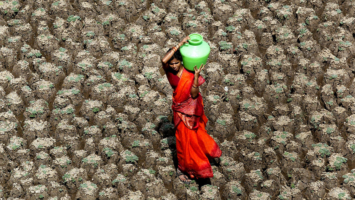 A woman carries water through a parched field in Hyderabad. (Photo: Reuters)